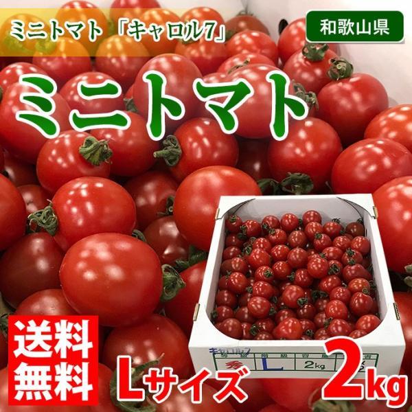 【送料無料】和歌山県産 ミニトマト 秀品 Lサイズ 2kg(1箱)