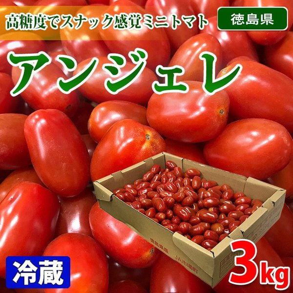 徳島県産 ミニトマト アンジェレ S〜Mサイズ 3kg(1箱)
