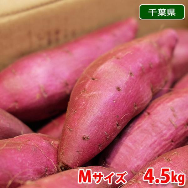 千葉県産 さつまいも シルクスイート 秀品 Mサイズ(20本前後入)約5kg(箱)