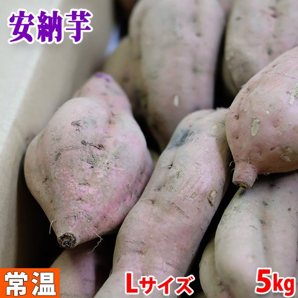 鹿児島県産 種子島さつまいも 蜜芋(安納芋) Lサイズ 5kg(箱)