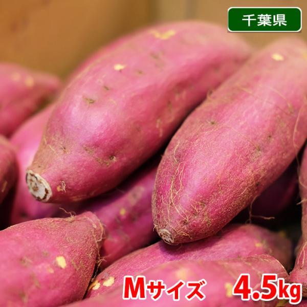 千葉県産 さつまいも 紅あずま (JAかとり) 秀品 Mサイズ(20本前後入)約5kg (箱)
