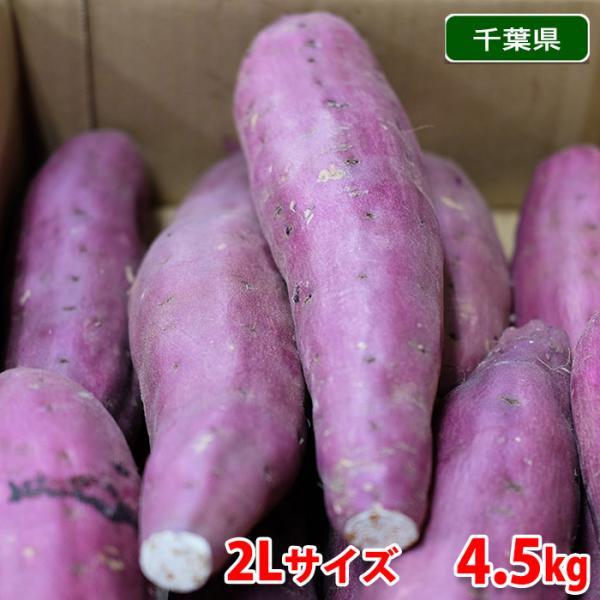 千葉県産 さつまいも 紅あずま (JAかとり) 秀品 2Lサイズ(約8本入)約5kg (箱)