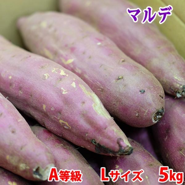 茨城県産 さつまいも 紅はるか (マルデ) A等級 Lサイズ(約12〜13本入り)5kg (箱)