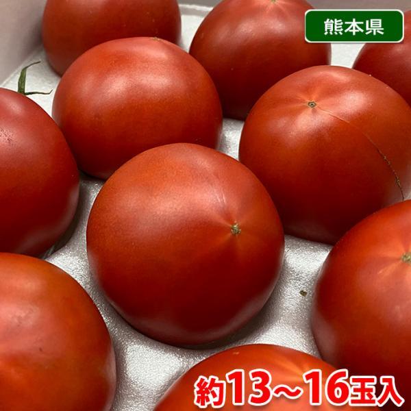 熊本県産 くまもと塩トマト(プレミアム)約13玉入(化粧箱)