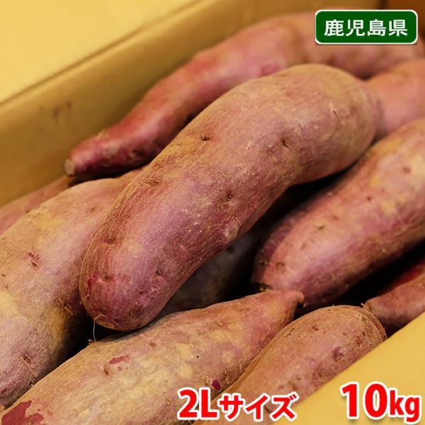 送料無料 鹿児島県産 紫芋 ナカムラサキ 2Lサイズ 10kg