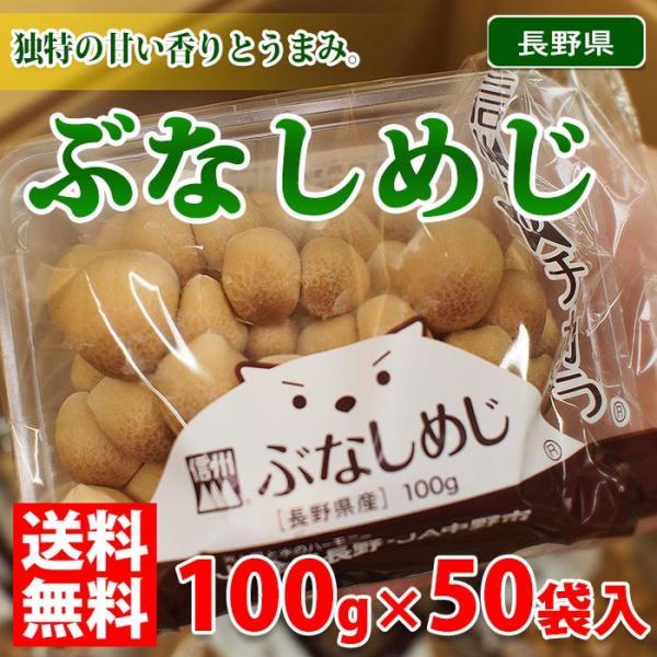 送料無料 長野県産 ぶなしめじ 100g×50パック(箱)