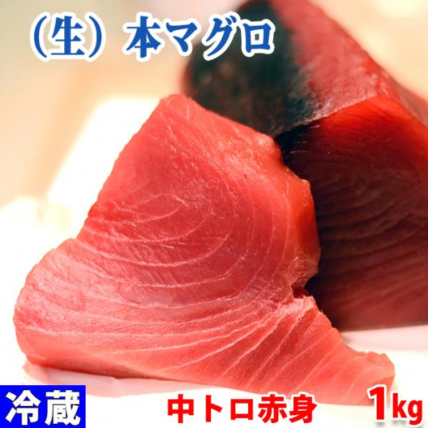生・本マグロ 中トロ・赤身ブロック 約1kg(国産・養殖)背側