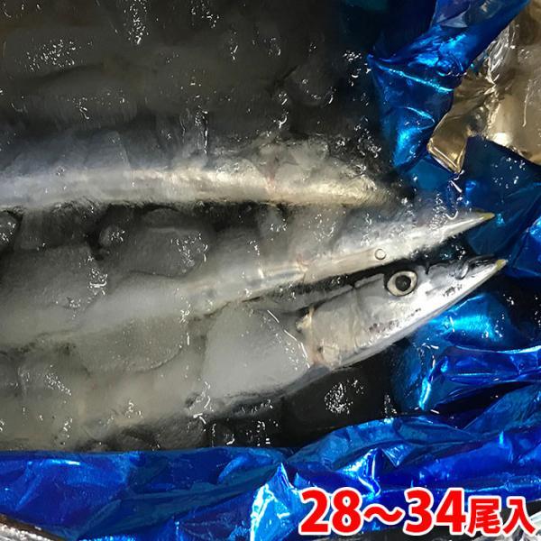 送料無料 北海道産 鮮さんま(生サンマ)30〜34尾入/箱