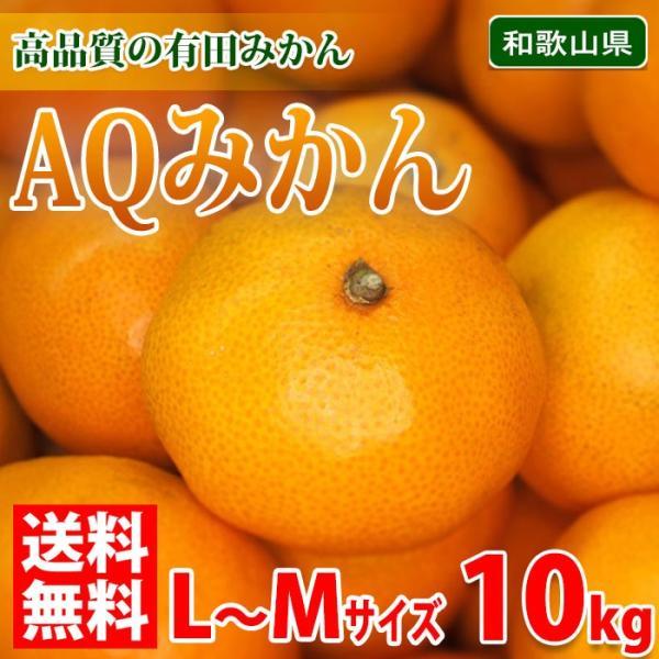 送料無料 和歌山県産 有田みかん AQみかん 秀品 L〜Mサイズ  10kg