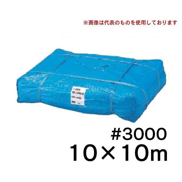 コンドーテック ブルーシート #3000 10X10m [1枚] 厚手 レジャー アウトドア 災害 建築工事 養生 資材カバー (/C)