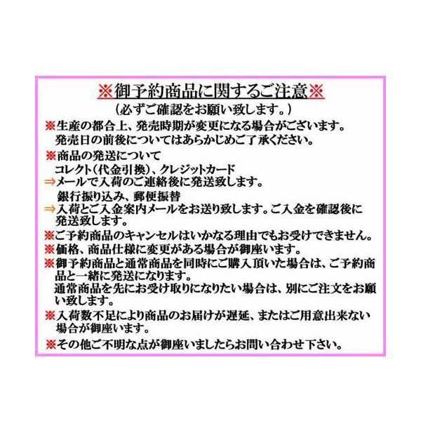 アムズデザイン アイマ ソウルヘッド 10号【メール便OK】