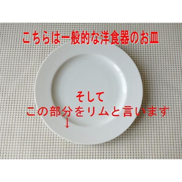 カンパネルラ24cmオーバルカレー皿/楕円皿  パスタ皿 カレーパスタ皿 食器 おしゃれ 美濃焼 日本製 業務用 北欧風 puchiecho 02