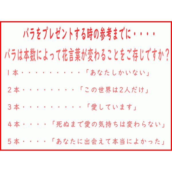 高級白磁材質ローズデココーヒーカップ&ソーサー(ブルーローズ)インスタ映え ロココ調 ティーカップ かわいい おしゃれ 日本製 バラ 薔薇 アウトレット込み|puchiecho|04