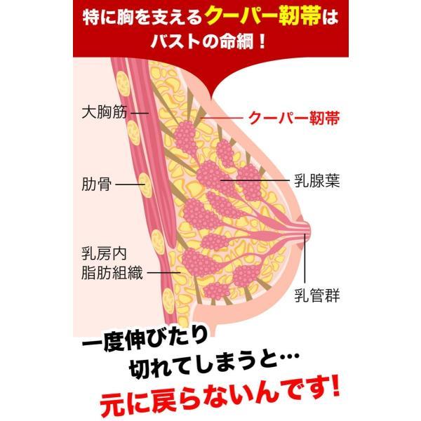 ナイトブラ バストアップブラ ブラジャー 脇肉 大きいサイズ ブラ 安い 30代 40代 大きいサイズ ラブリーシェイプ24h美乳育成ナイトブラ|pureseek|19