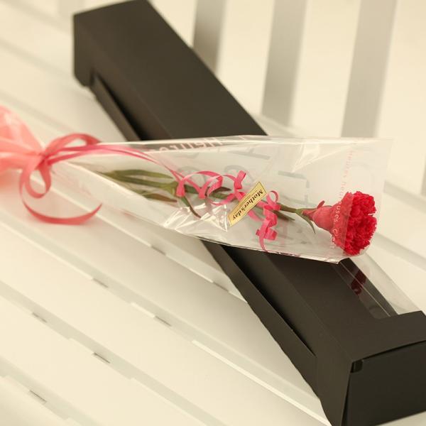 プリザーブドフラワー アイネ ホットピンク 母の日 ギフト カーネーション 花束|purizasenka