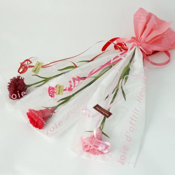 プリザーブドフラワー アイネ ホットピンク 母の日 ギフト カーネーション 花束|purizasenka|02