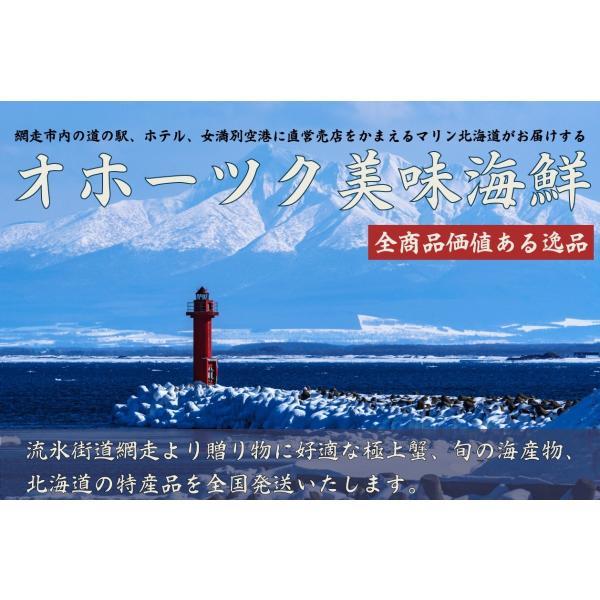 【北海道網走から直送!】豪華オホーツクセット【有限会社マリン北海道】|pyloninc|09