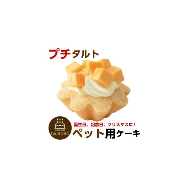 犬用ケーキ 誕生日ケーキ プチタルト(チーズ味)  ペットケーキ