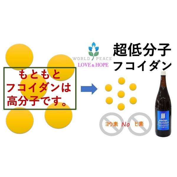 超低分子液体フコイダン アミノフコイダン 有糖 1800ml 1本|queenandking|04