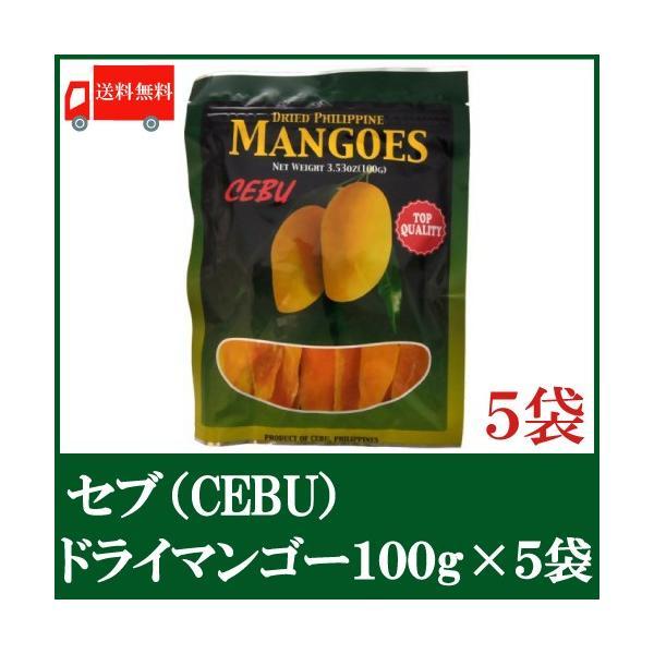 ドライマンゴー セブ 100g×5袋 ドライフルーツ 送料無料