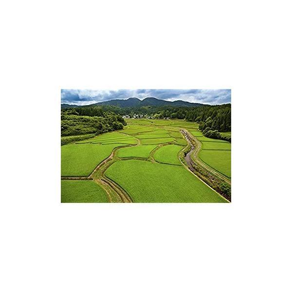 KD-2 天地の農カレンダー(2020年版カレンダー)|r-ainet|02