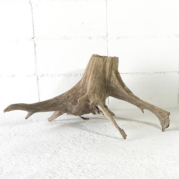 昆虫 止まり木 爬虫類 カブトムシ クワガタ 止まり木 両生類 のぼり木  _ka0328