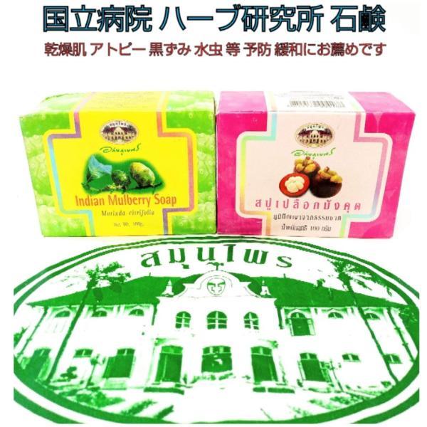 国立病院 石鹸 2個組 ノニ石鹸 マンゴスチン石鹸 正規品 【新品】 メール便対応
