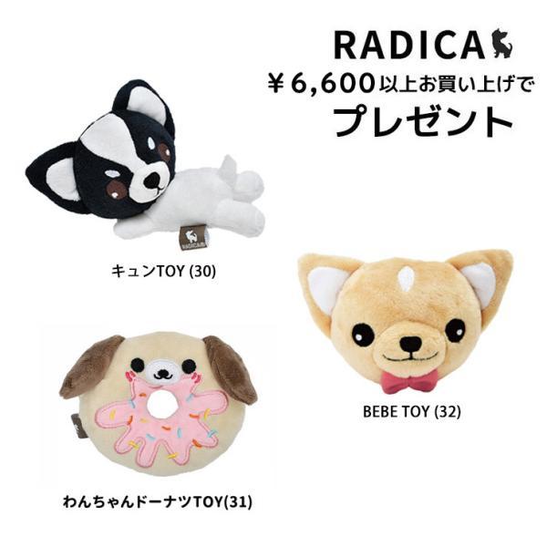 【合計5,500円以上の商品と一緒にカートに入れれば1円でプレゼント】RADICA 選べるプレゼント メール便不可※ 必ずカートにお入れください。