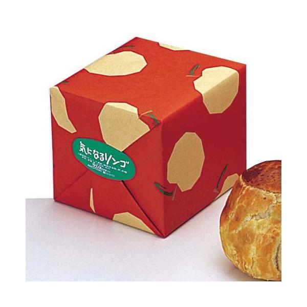 気になるリンゴ(1個)|rag-s|02