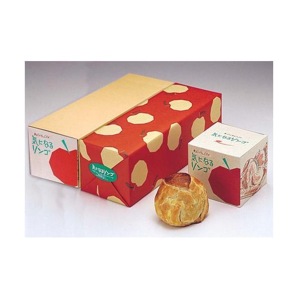 気になるリンゴ(3個入)|rag-s