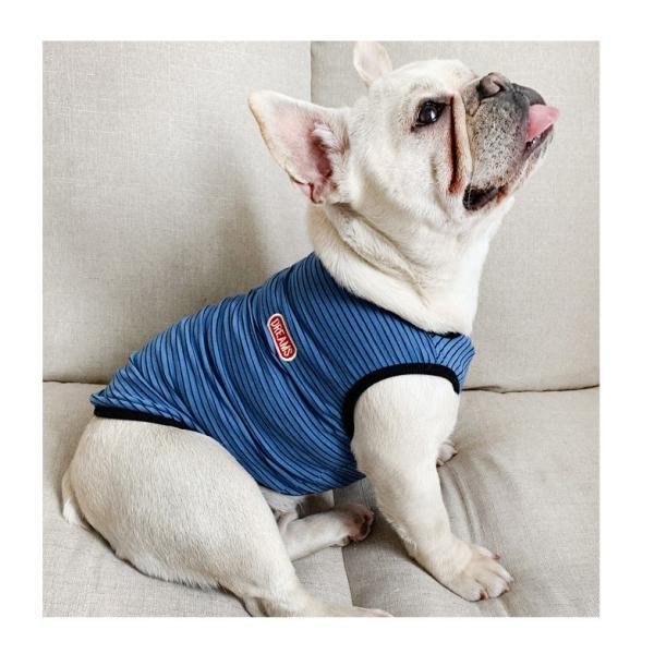 犬 お揃いコーデ 犬とお揃い 犬 ペアルック 犬の服 ペット親子お揃い♪ペットとオーナーがペアルック出来る♪Tシャツ 犬とペアルック 犬服親子 ドッグウェア|rainbow18-store|12