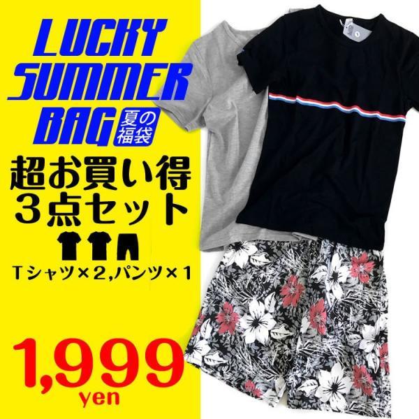 夏の福袋Tシャツ2枚とショートパンツが確定で入った激安福袋 数量 販売水着短パン海パンメンズF13