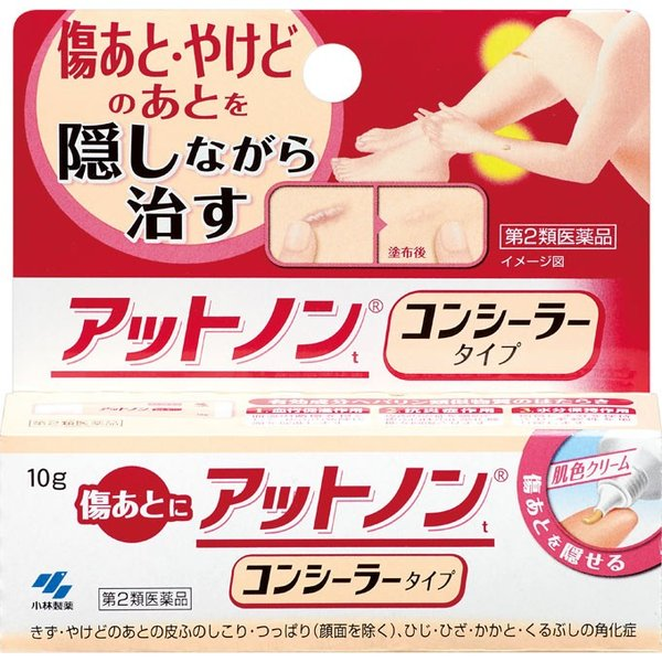 (第2類医薬品)小林製薬 アットノンt コンシーラータイプ 10g|rakushindenki