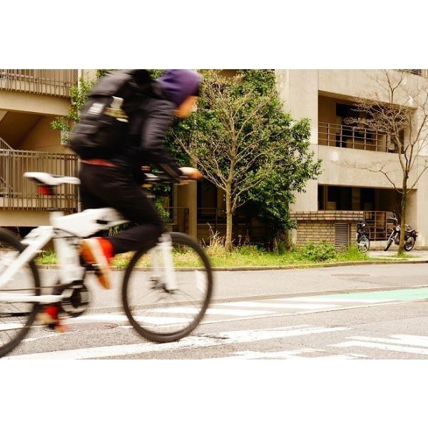 [折りたたみ電動自転車]バロンX 26インチ スポーツ系電動自転車 大容量13Ahバッテリーが人気 電動自転車に見えない|rakusuku|14