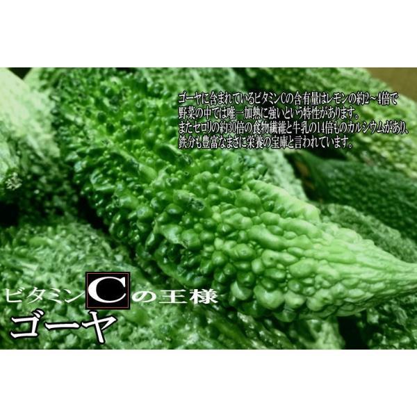 酵素青汁 6個セット  青汁 139種配合 健康 粉末 健康食品 健康補助食品 国産 ケール/大葉若葉/ゴーヤ/ブドウ糖  植物発酵エキス+3大青汁 送料無料|rankup|04