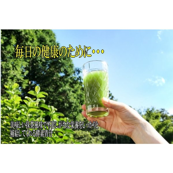 酵素青汁 6個セット  青汁 139種配合 健康 粉末 健康食品 健康補助食品 国産 ケール/大葉若葉/ゴーヤ/ブドウ糖  植物発酵エキス+3大青汁 送料無料|rankup|06