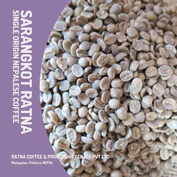 ラトナヒマラヤンコーヒー生豆500g|ratnahimalayancoffee