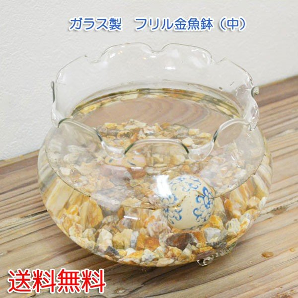 フリル金魚鉢中ガラス製きんぎょ鉢メダカ鉢水槽アクアリウム