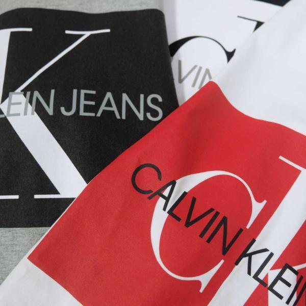 カルバン クライン ジーンズ モノグラム ロゴ ブロック Tシャツ 全3色 メンズ|rawdrip|05