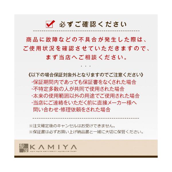 送料無料 ケアライズ AQUA PLATE WP ヘアアイロン|SI-200V 24.5mm ストレートヘアアイロン ストレートヘアーアイロン ストレートアイロン ストレート|ray|03