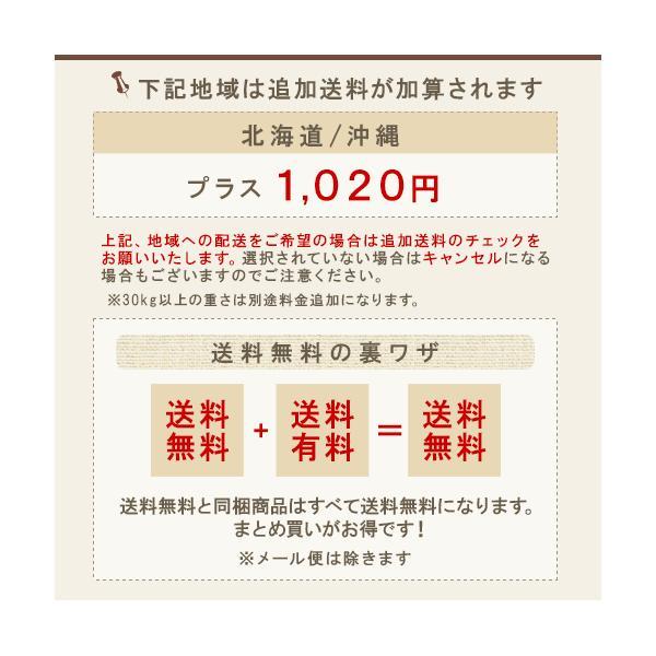 コタ アイケア シャンプー  800ml 1個+トリートメント 1000g 1個 計2個セット cota コタ おすすめ品 美容室 コタy コタk ray 02