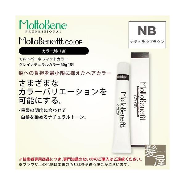 ビューティーエクスペリエンス フィットカラー グレイナチュラルカラー 1剤 ナチュラルブラウン 60g nb-2 nb-3 nb-4 nb-5 カラー剤 業務用 メール便対応4個まで ray