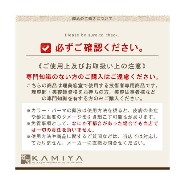 ビューティーエクスペリエンス フィットカラー グレイナチュラルカラー 1剤 ナチュラルブラウン 60g nb-2 nb-3 nb-4 nb-5 カラー剤 業務用 メール便対応4個まで ray 02