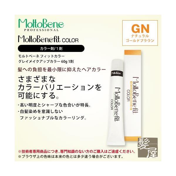 ビューティーエクスペリエンス フィットカラー グレイメイクアップカラー 1剤 ナチュラルゴールドブラウン 60g gn-6 gn-7 gn-8 カラー剤 メール便対応4個まで ray