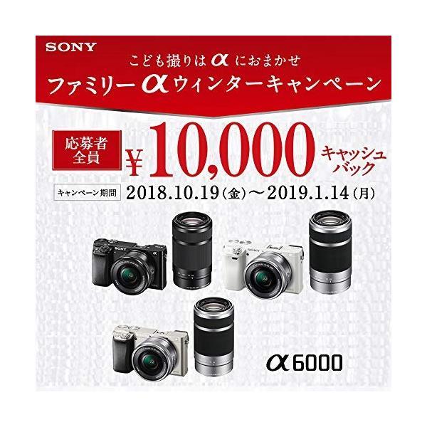 SONY ミラーレス一眼 α6000 ダブルズームレンズキット E PZ 16-50mm F3.5-5.6 OSS + E 55-210mm F4.5