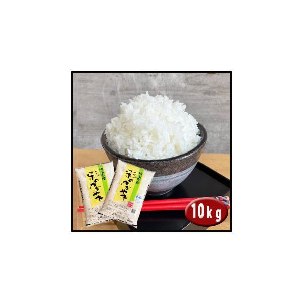 2年産 無洗米  彩のかがやき 10kg(5kg×2袋) 埼玉県産 検査一等米