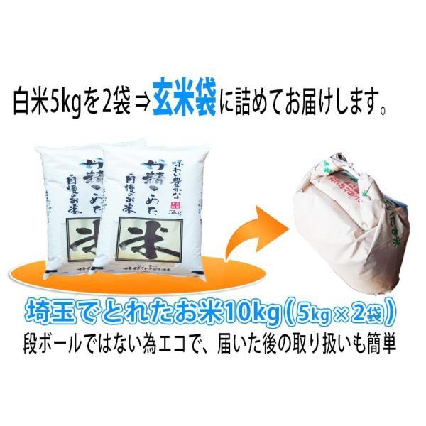 お米 29年産 10kg埼玉でとれたお米 白米(5kg×2袋) 契約農家直送米 |rc-kaneko|03