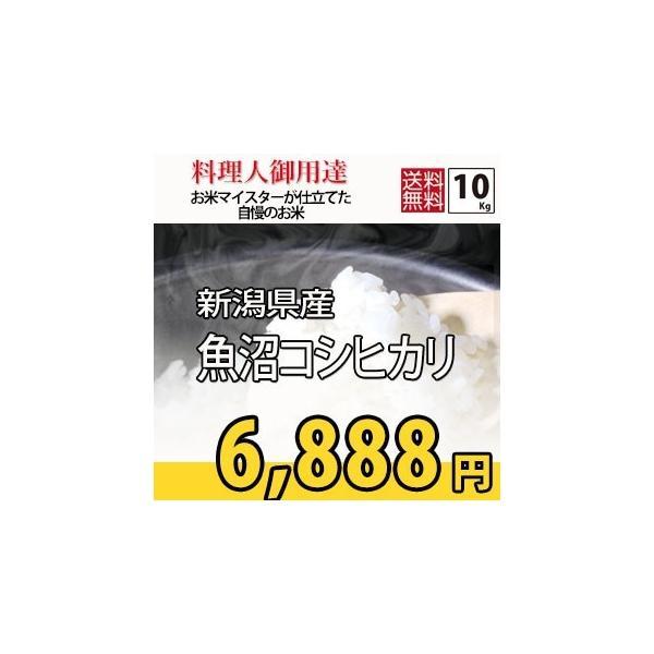 お米 10kg コシヒカリ 米作り名人が作った (5kg×2) 新潟県魚沼産 検査一等 29年産|rc-kaneko