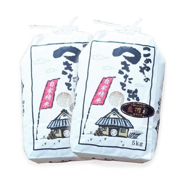 お米 10kg コシヒカリ 米作り名人が作った (5kg×2) 新潟県魚沼産 検査一等 29年産|rc-kaneko|02