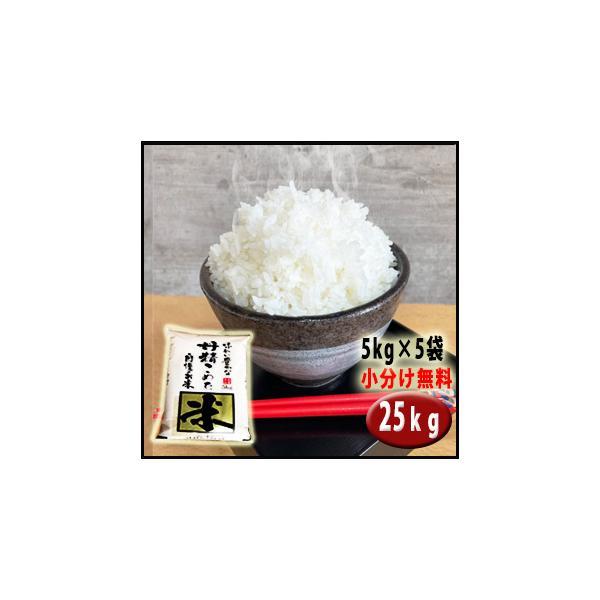 お米 29年産 25kg埼玉でとれたお米 白米(小分け無料)キロ単価約 377円契約農家直送米 |rc-kaneko